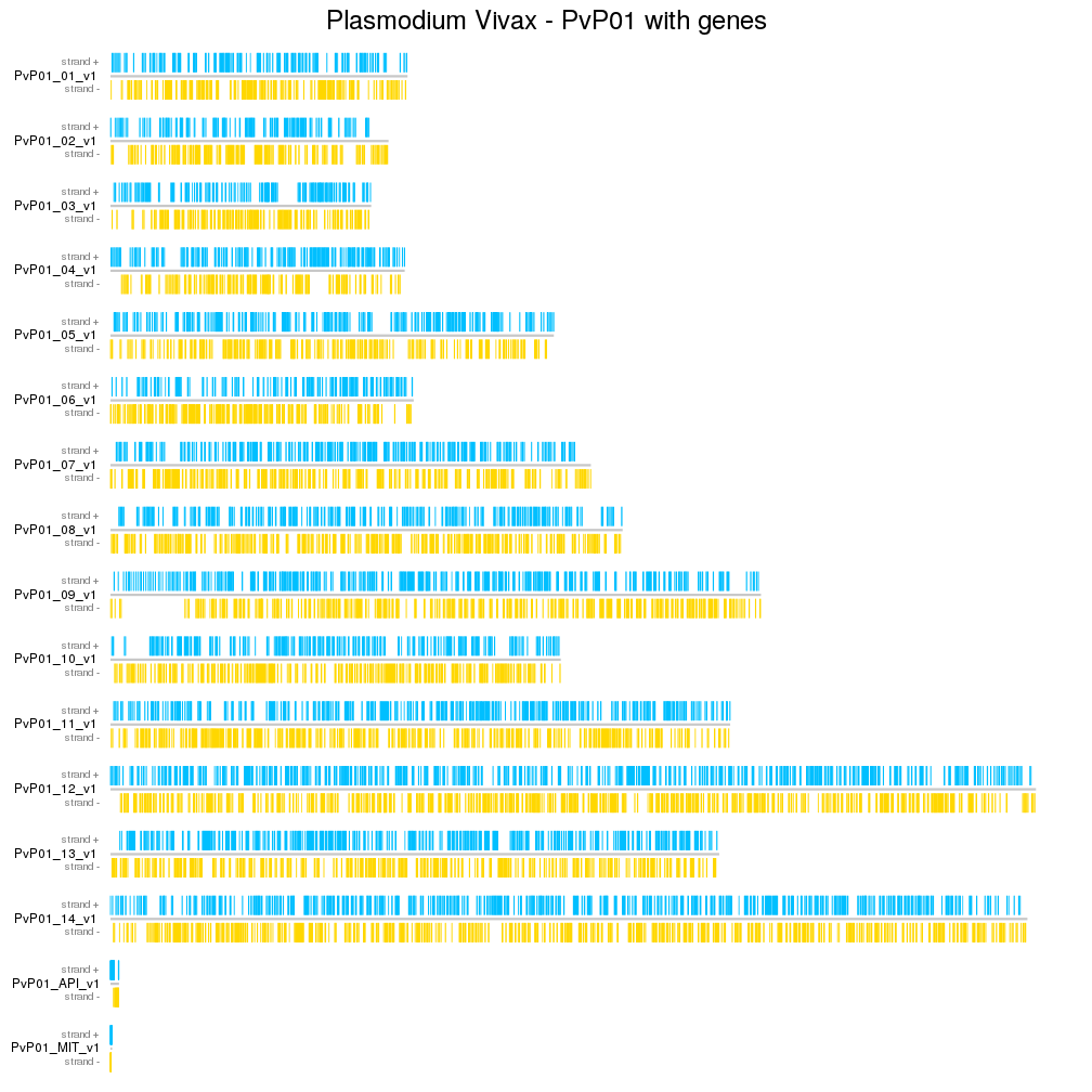 A karyoploteR example plotting the genes from Plasmodium Vivax PvP01 genome version