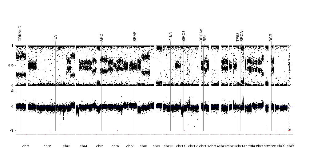 A karyoploteR example plotting raw SNP-array data