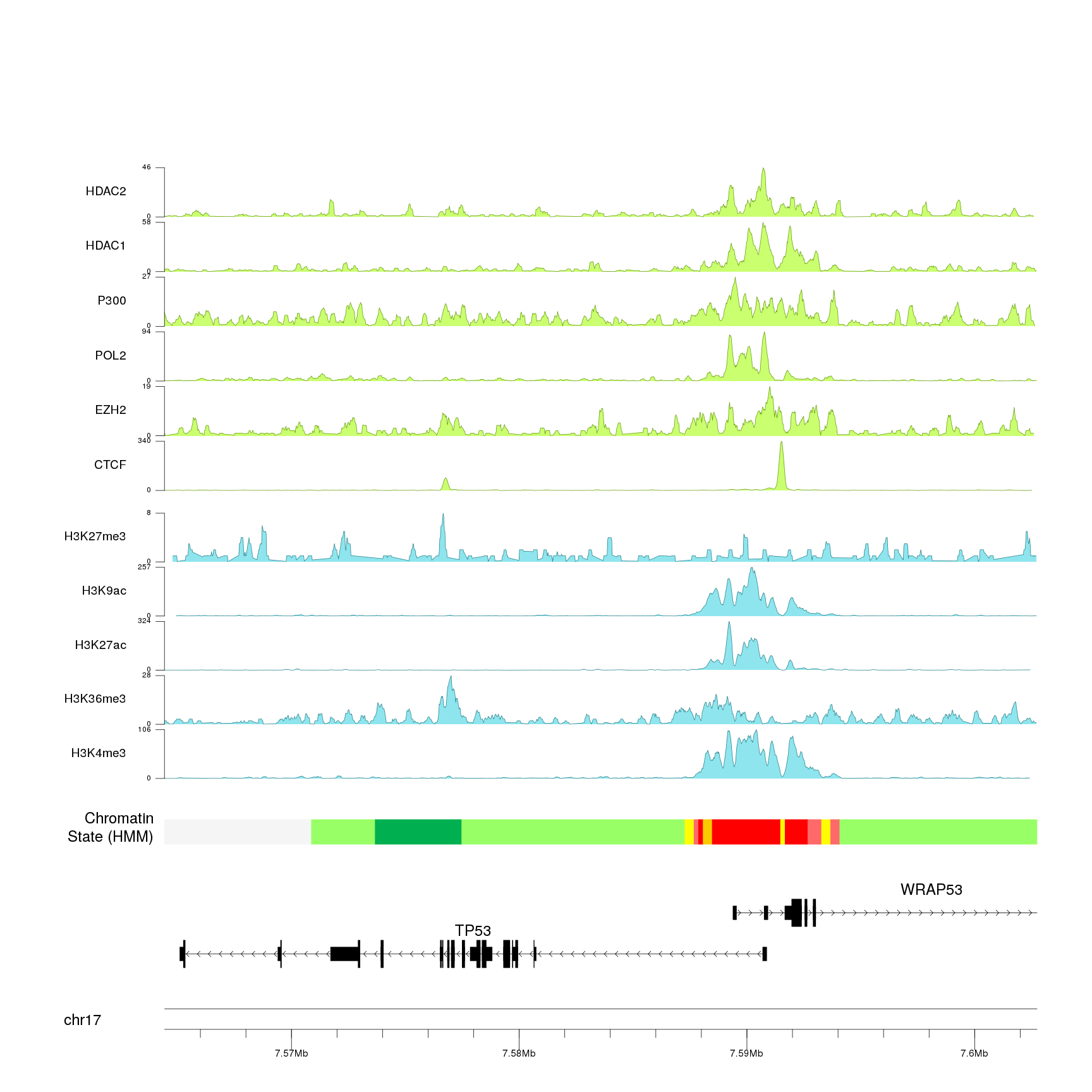 An example of BigWig data plotted with genes over the genome using karyoploteR