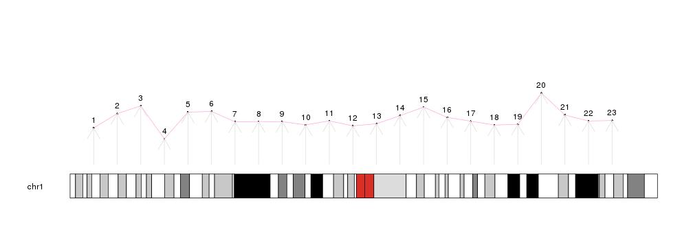 karyoplot with some data